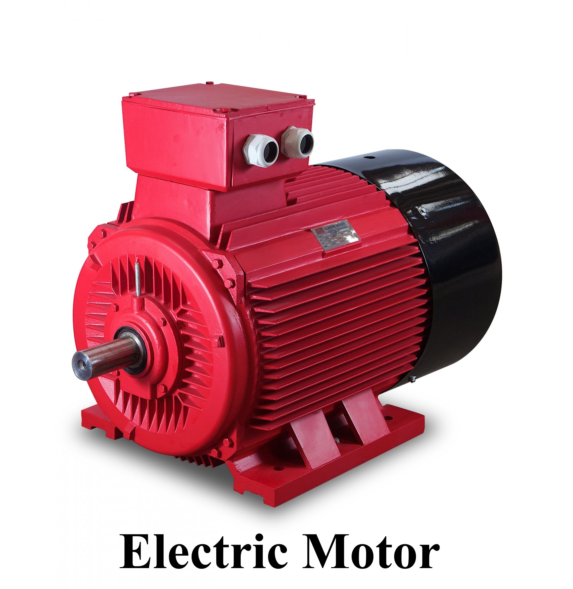 electric_motor_1447565336_wz530